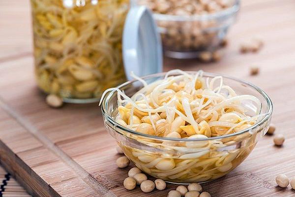 Một số tác dụng của mầm đậu nành mà có thể bạn chưa biết