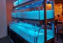 Bể cá hải sản cho nhà hàng giá bao nhiêu?