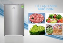 Vì sao nên sử dụng tủ lạnh electrolux 92 lít eum0900sa?
